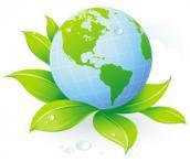 Ответственность за окружающую среду